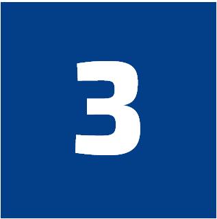 FLX-process-3